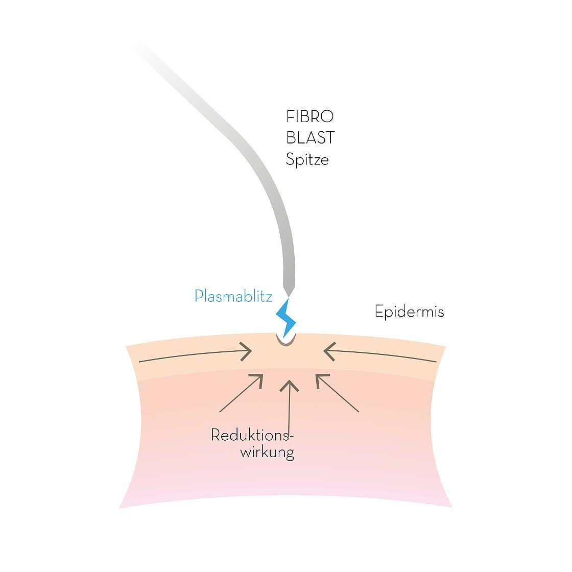 PB FIBROBLAST-Illustration_01-1120x1120